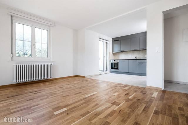 Neusaniertes Mehrfamilienhaus inkl. Gewerbe /