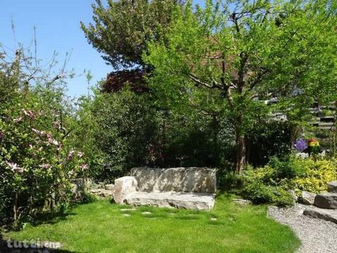 Helles, offenes Haus mit idyllischem Garten